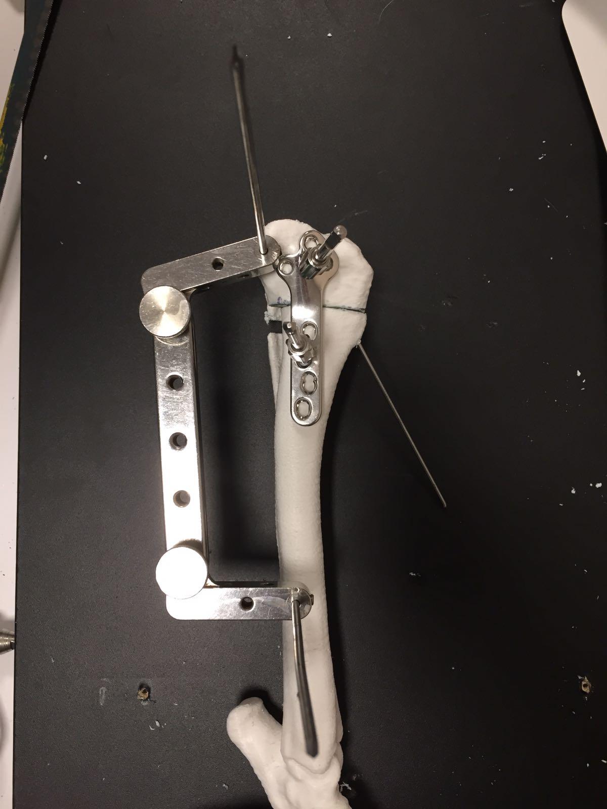 chirurgia-veterinaria-3D